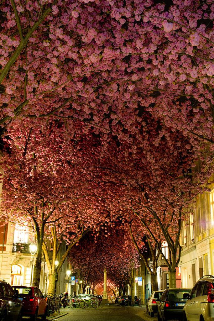 beautiful-streets-mmagazin2