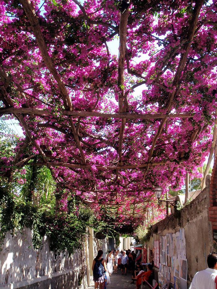 beautiful-streets-mmagazin2f
