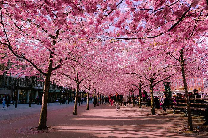 beautiful-streets-mmagazin4