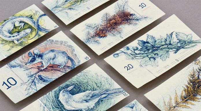 16bc540cf6813 Ako by vyzerali euro bankovky navrhnuté maďarskou študentkou?